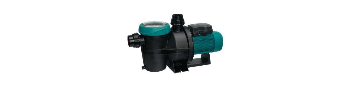 Filter Pumpe Silen S2