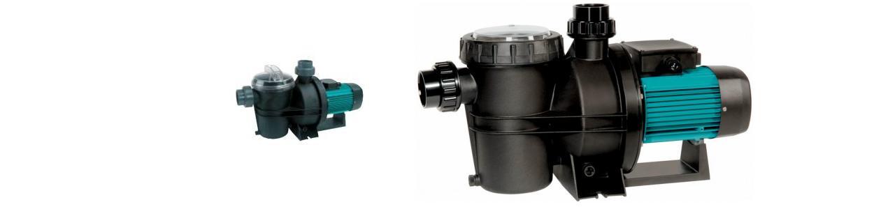 Filter Pumpe Silen 2