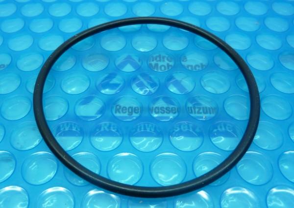O-Ring für Pumpengehäuse Basic